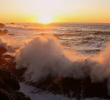 Sunset..Shore Acres by Chappy