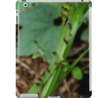 Ant Migration  iPad Case/Skin