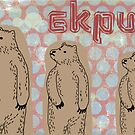 Bear Card by ekpuk