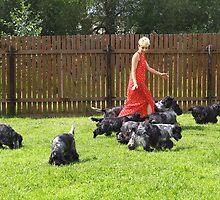 dogs (5) by Oksana Vlassenko