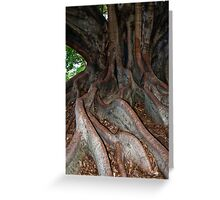 Roots and  All. Greeting Card