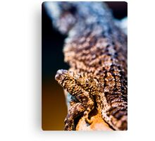 From Behind Canvas Print