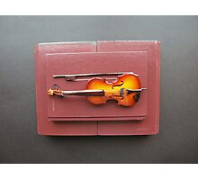 Fiddling the books Photographic Print
