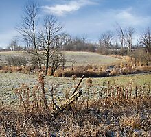 Morning Frost - Smithville Ontario Canada by David Buckle