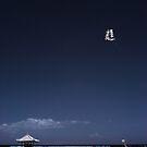 Prepare for Landing by Reynandi Susanto