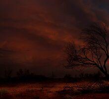 Evening Glow by Craig Hender