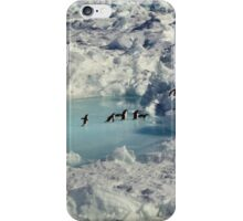 Adelie Procession #4 iPhone Case/Skin