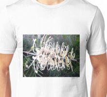 """Grevillea """"Ivory Whip"""" Unisex T-Shirt"""