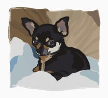 Chihuahua in Blankets Baby Tee