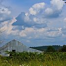 Land, and Sky, Barn In NW Arkansas by NatureGreeting Cards ©ccwri