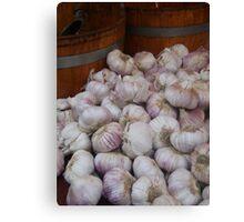 Onions in Portobello Canvas Print