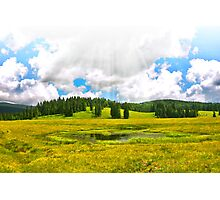 Alpine plateau in vivid colors. Photographic Print