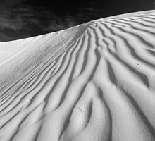 Dune in Black and White by stephen foote
