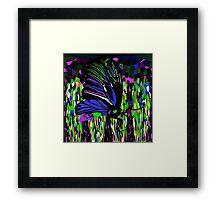 Butterfly Night Framed Print