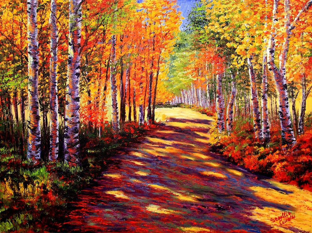 Aspen Light on the Road by sesillie