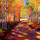 Aspen Light on the Road by sesillie