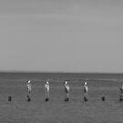Werribee South Beach II by Joan Wild