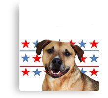 American Pitbull Terrier dog Canvas Print