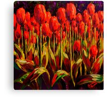Red Tulips in the Light Canvas Print