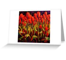 Red Tulips in the Light Greeting Card