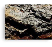The Hidden Land - Summit On Red Mountain Canvas Print