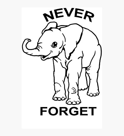 Baby Elephant Never Forget Funny TShirt Epic T-shirt Humor Tees Cool Tee Photographic Print