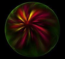 Poinsettia by Susan L. Calkins