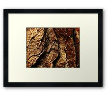 The Hidden Land - Steps To Red Oblivion Framed Print