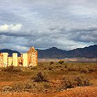 Remnants - Flinders Ranges by Marion  Cullen