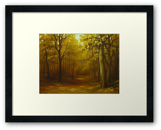 autumn forest by edisandu