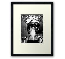 The Ironic Agony of Narcissism Framed Print