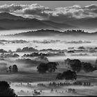 Ovens Valley, misty morning by Kevin McGennan
