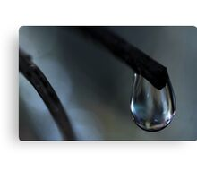 The Pure Drop Canvas Print