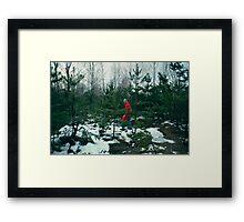walk in-field among fir-trees Framed Print