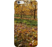 When apples fall iPhone Case/Skin