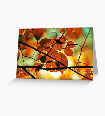 autumn,gold branch Greeting Card