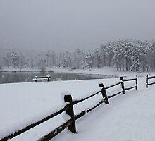 Sengers Mountain Lake by ej29