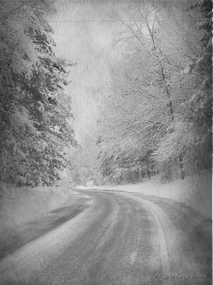 The road to Winter by Angela King-Jones
