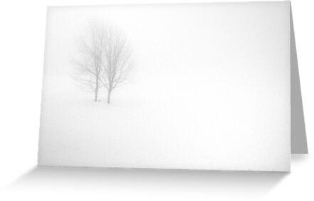 Zen by Mary Ann Reilly