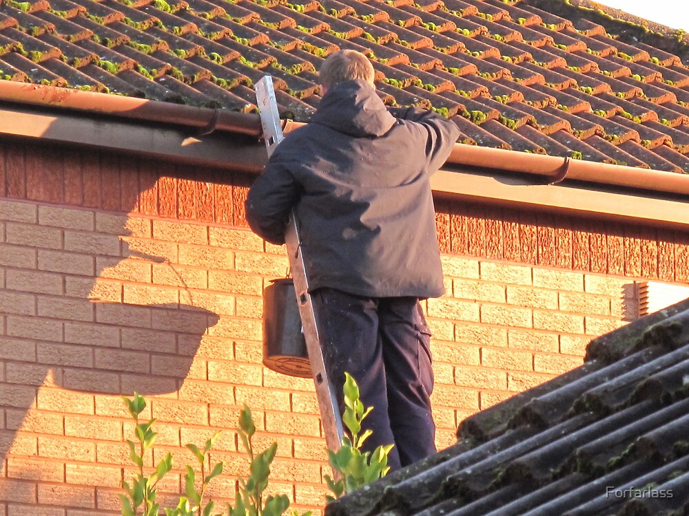 Cleaning out the Guttering. by Forfarlass