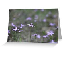 Field of Waxlip Orchids - St Andrews Victoria Greeting Card
