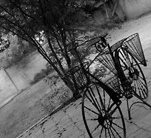 bike by photobydebra