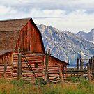 Barn on Mormon Row in Grand Tetons by Teresa Zieba