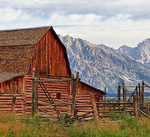 Barn on Mormon Row in Grand Tetons by Teresa Zieba