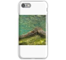 Under the Sea-Starfish iPhone Case/Skin
