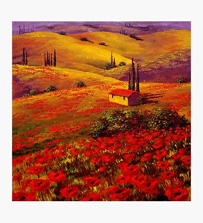 Tuscany Poppy Hills Photographic Print