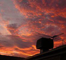 Suburban Sunset by Joan Wild