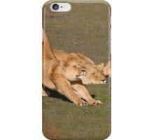 Sleepy Lionesses iPhone Case/Skin