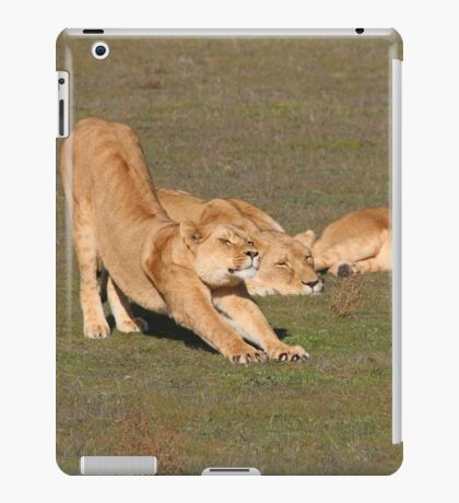 Sleepy Lionesses iPad Case/Skin