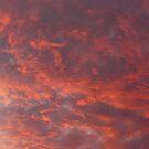 Fiery Sunset by Joan Wild